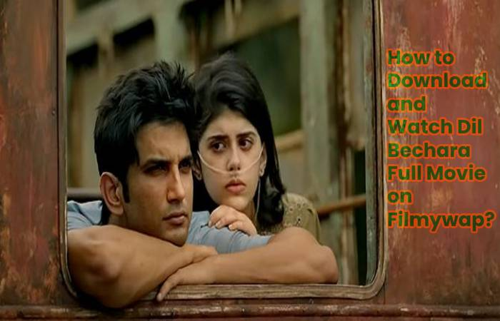 dil bechara full movie download filmywap